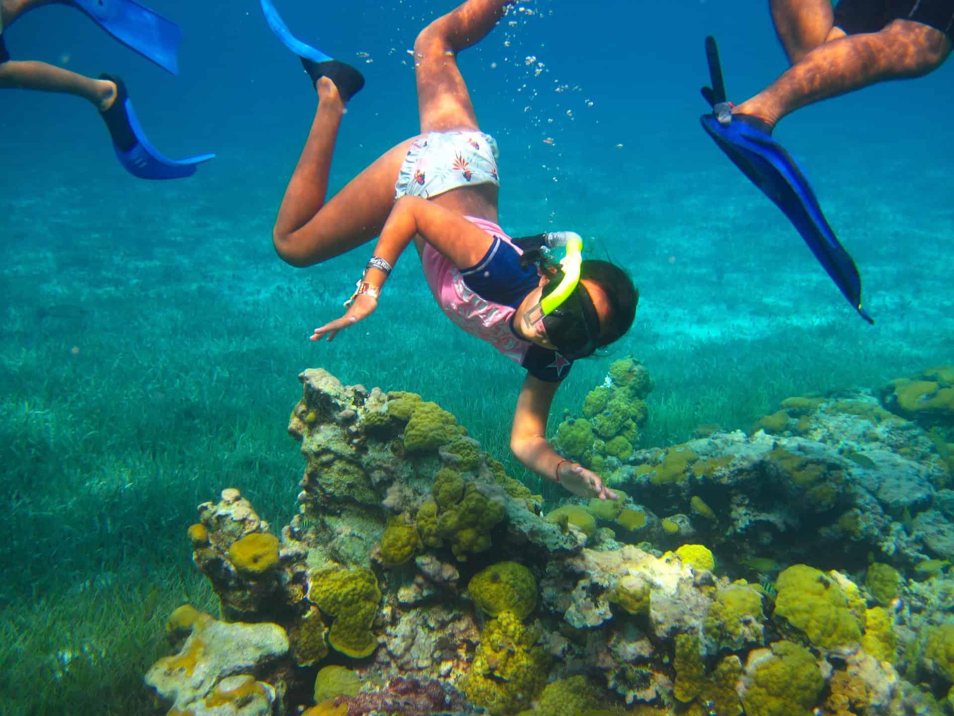 Cozumel Private Snorkeling Palancar Reef Jamaica Cruise