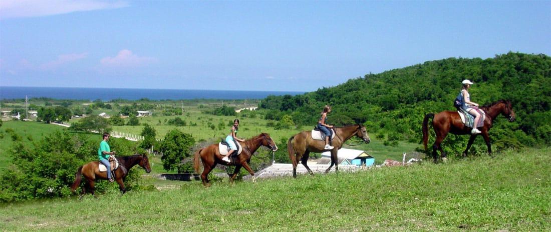 Montego Bay Beach Horseback Riding Jamaica Cruise Excursions