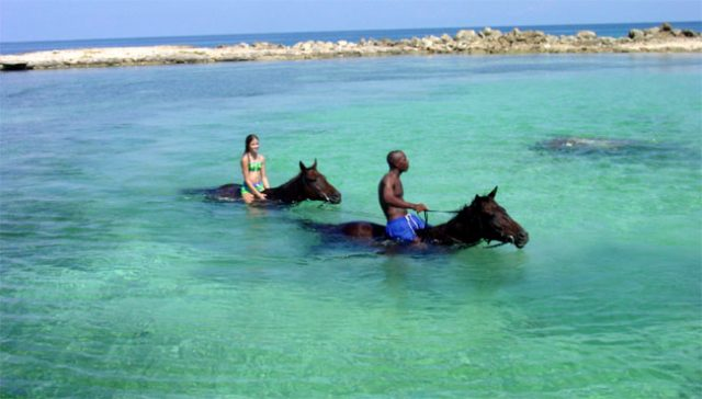 Jamaica Cruise Excursions And Shore Tours Island